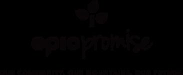 epic promise logo
